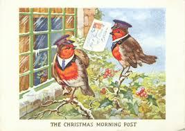 por qué el petirrojo es el pájaro de la navidad